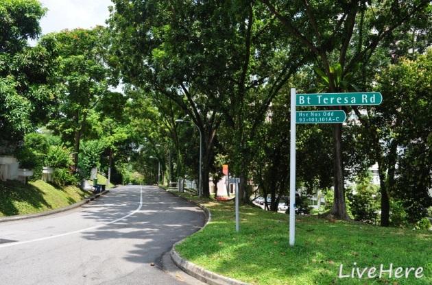 Teresa Road 2